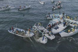 denuncian pesca ilegal con red en habitat de vaquita marina