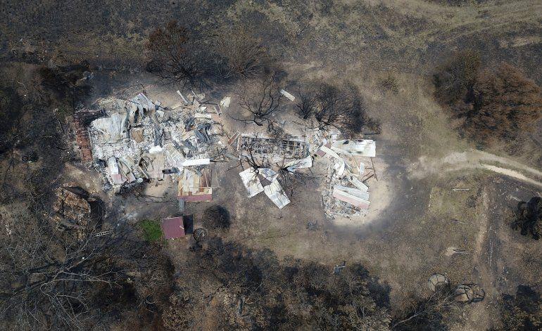Australia-Incendios: No se rinde y sigue buscando a su perro