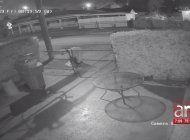 buscan a joven por robar dentro de vehiculos en una zona residencial de miami