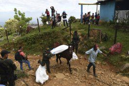 enfrentamiento deja 5 muertos en zona rural de colombia