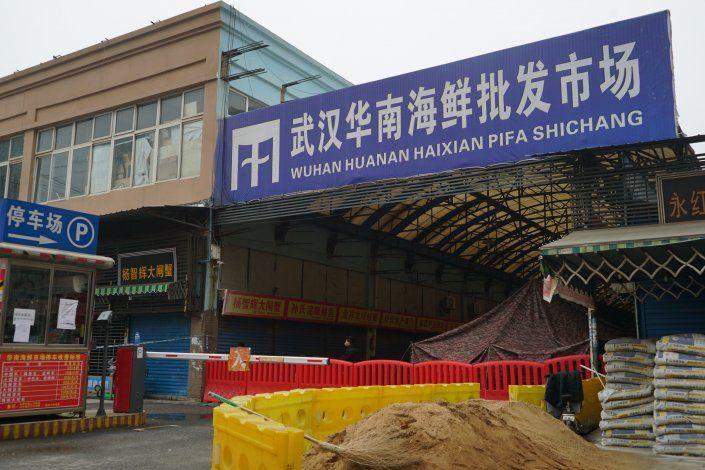 China: Virus renueva preocupación sobre animales silvestres