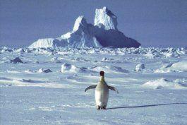 onu: se deben verificar altas temperaturas en la antartida