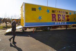 el show no puede continuar: virus detiene a circo en holanda