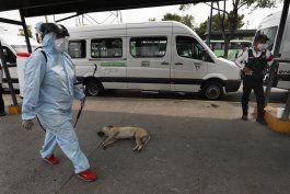 medidas contra coronavirus no disminuyen violencia en mexico