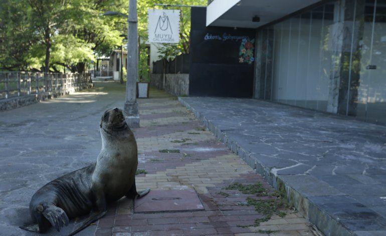 Galápagos abre parcialmente sitios de visita para turistas