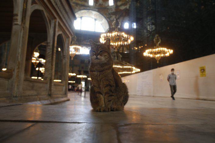 Turquía rechaza condena de la UE por mezquita Hagia Sophia