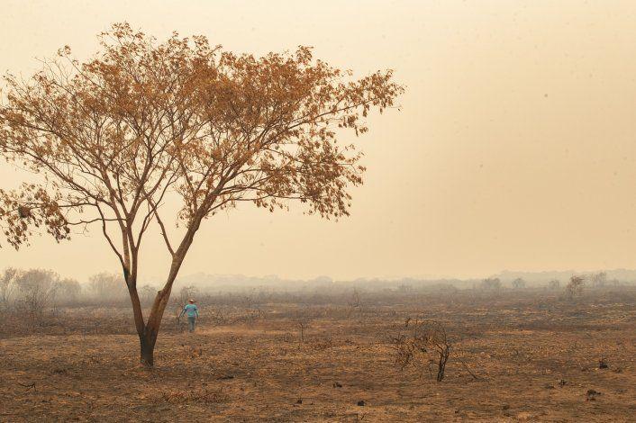 Enorme incendio arde en la zona de Pantanal en Brasil