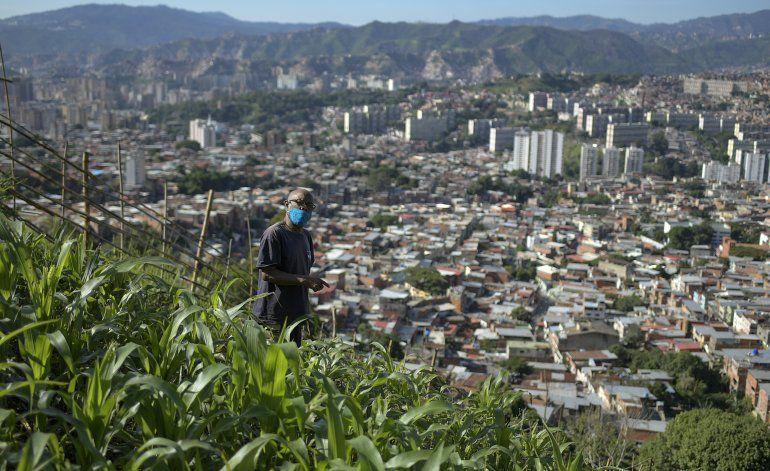Crecen cultivos urbanos por crisis y pandemia en Venezuela