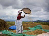 india: legisladores aprueban polemico plan agricola