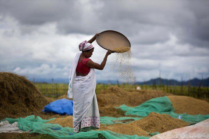 India: Legisladores aprueban polémico plan agrícola