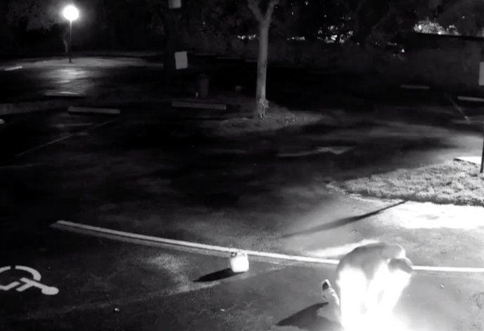 Captado en cámara el momento en que un hombre prende fuego a una iglesia en Broward