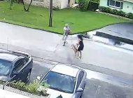 un pitbull ataca brutalmente a una mujer que paseaba a su perro por el vecindario