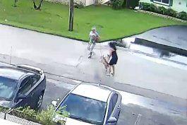pitbull ataca brutalmente a una mujer