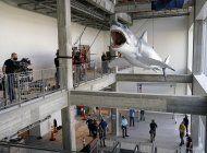 bruce, el ultimo tiburon, llega al museo de la academia