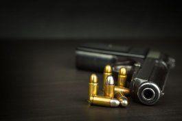 vuelven a aprobar la nueva ley de armas