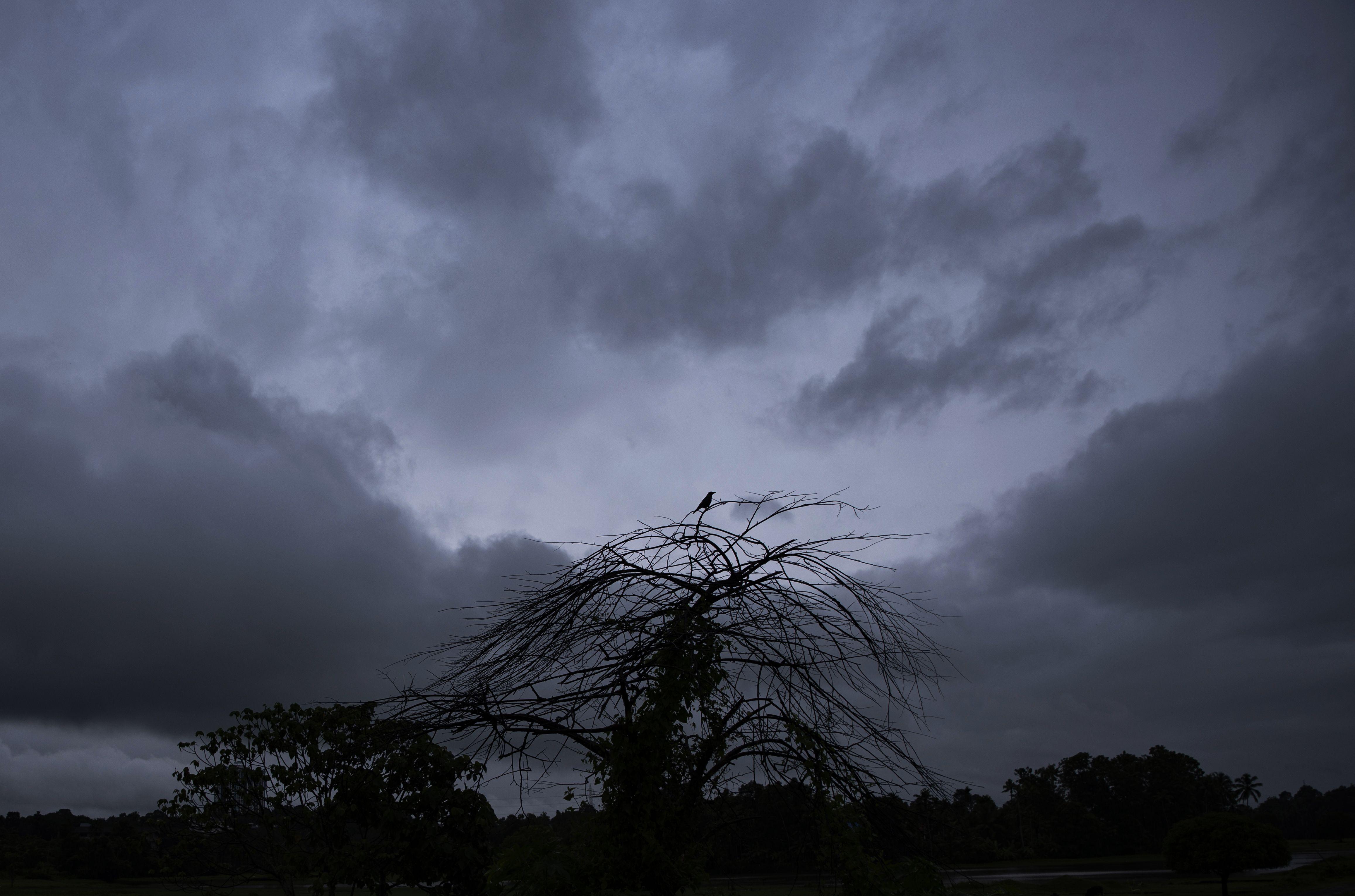 india: 8 muertos, 12 desaparecidos por lluvia e inundaciones