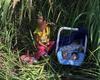 Encuentran a niña de 2 años y su hermanito de 3 meses abandonados cerca de un río en la frontera