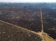 brasil da por concluido despliegue militar en amazonia