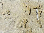 hallan huellas humanas de hace 23.000 anos en nuevo mexico