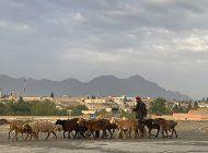 afganistan: caen proyectiles cerca de palacio presidencial