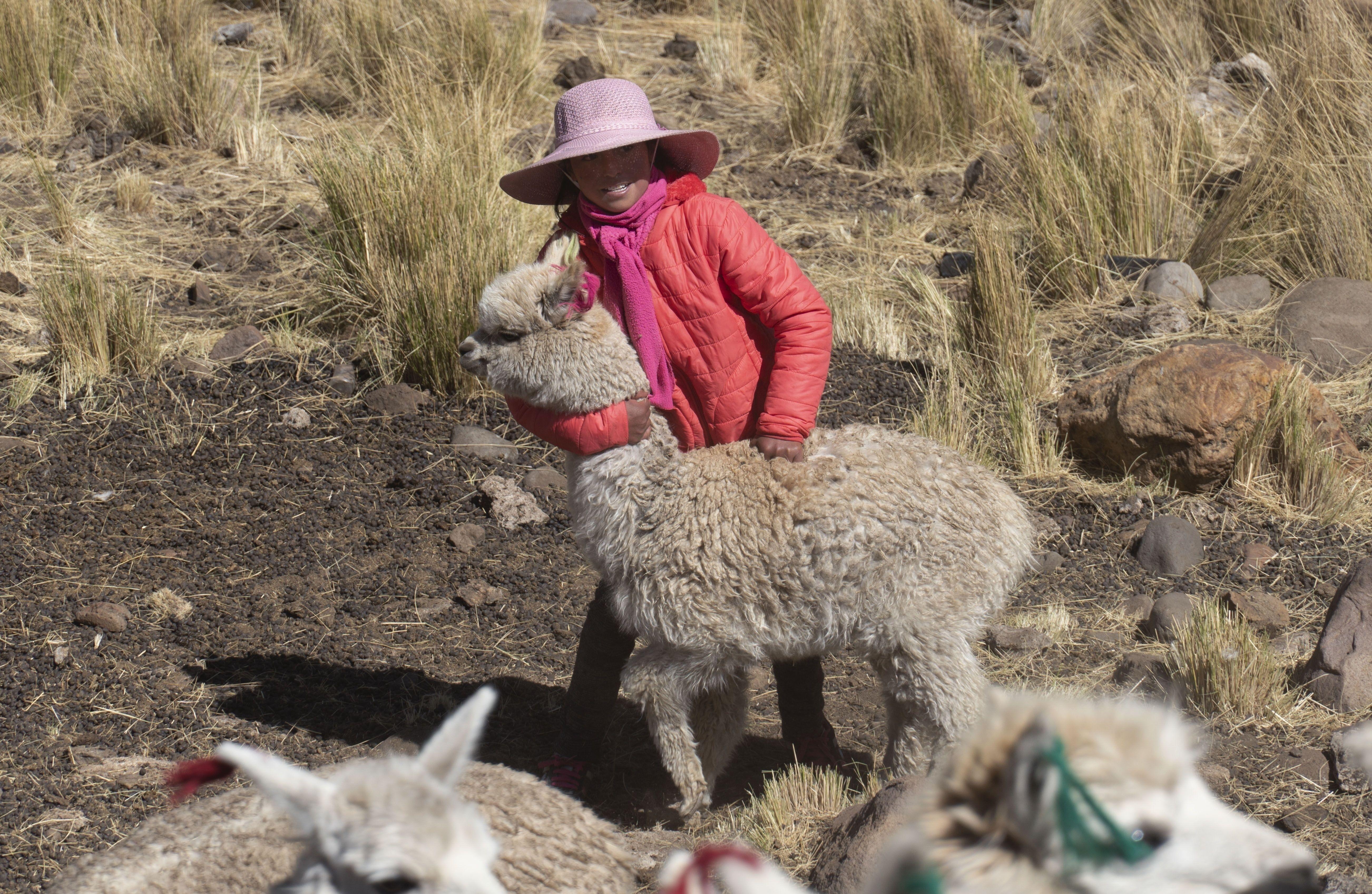 con casi todo en contra, el quechua sigue vigente en peru