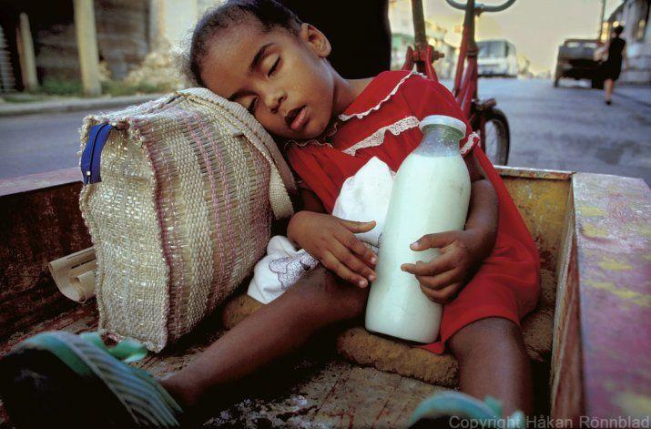 El Gobierno de Cuba publica los nuevos precios para la compra de la carne de res y la leche a los campesinos
