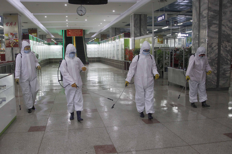 la oms prepara envio de suministros anti-covid a norcorea