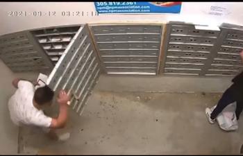 Captado en cámara el robo de todos los buzones de correo en un condominio de Hialeah