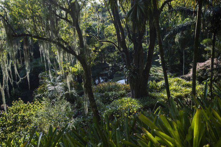 UNESCO reconoce jardín de Río como Patrimonio Mundial