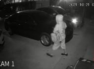 miami: adolescente roba el perro y dos vehiculos de la casa de sus vecinos