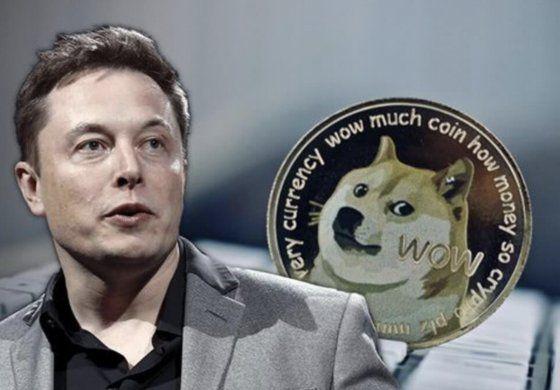 El dogecóin se desploma al afirmar Musk que esa criptodivisa se apoderará del mundo pero luego admita que en realidad es un lío