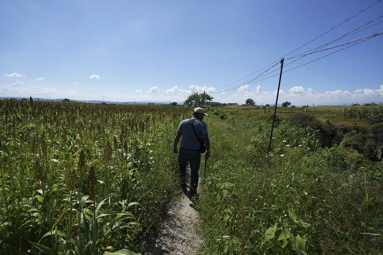 Familias recorren México en busca de sus desaparecidos