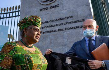 OMC debate una exención en las patentes de las vacunas