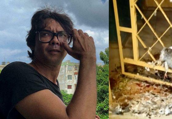 Régimen coloca aves decapitadas en la puerta de la casa de Yunior García