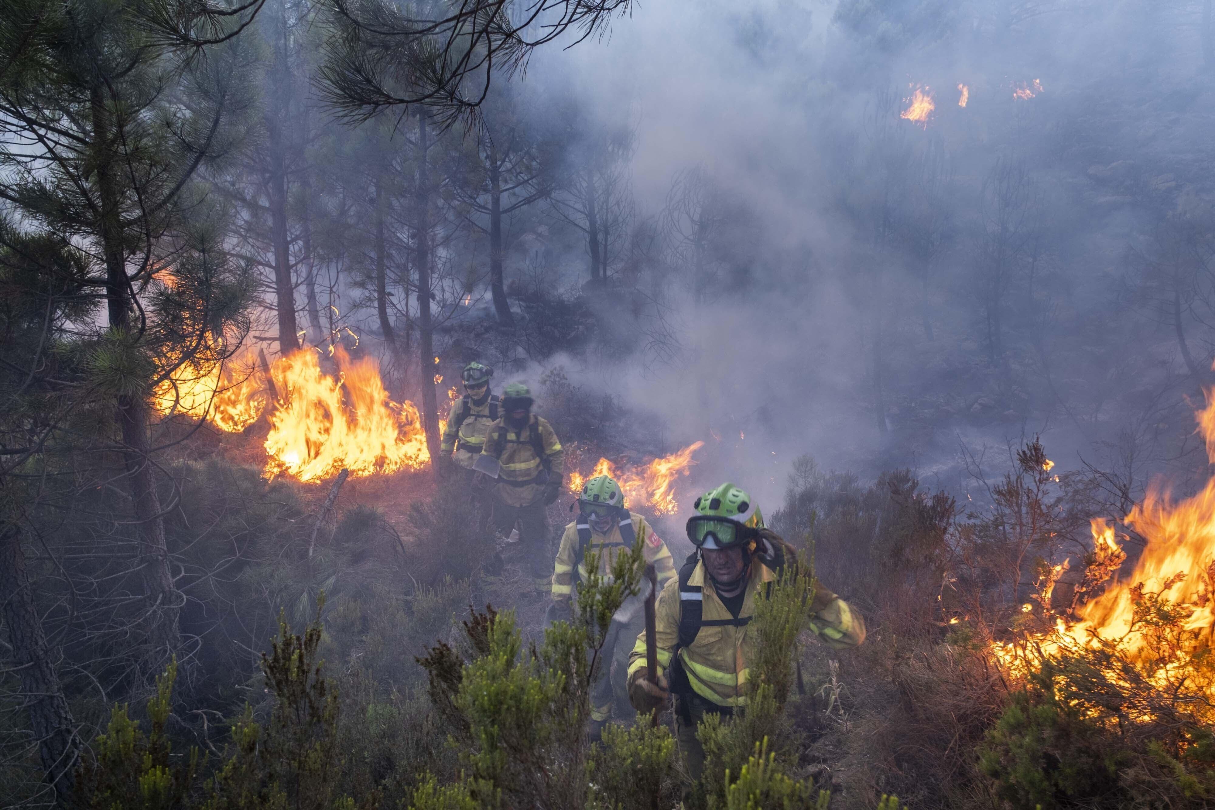 denuncian muertes de defensores de recursos ambientales
