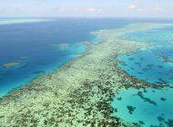 unesco defiende decision sobre arrecife en australia