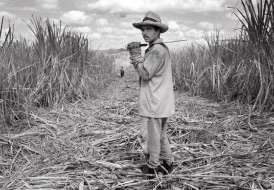 La Cuba del recuerdo | El azúcar y Cuba