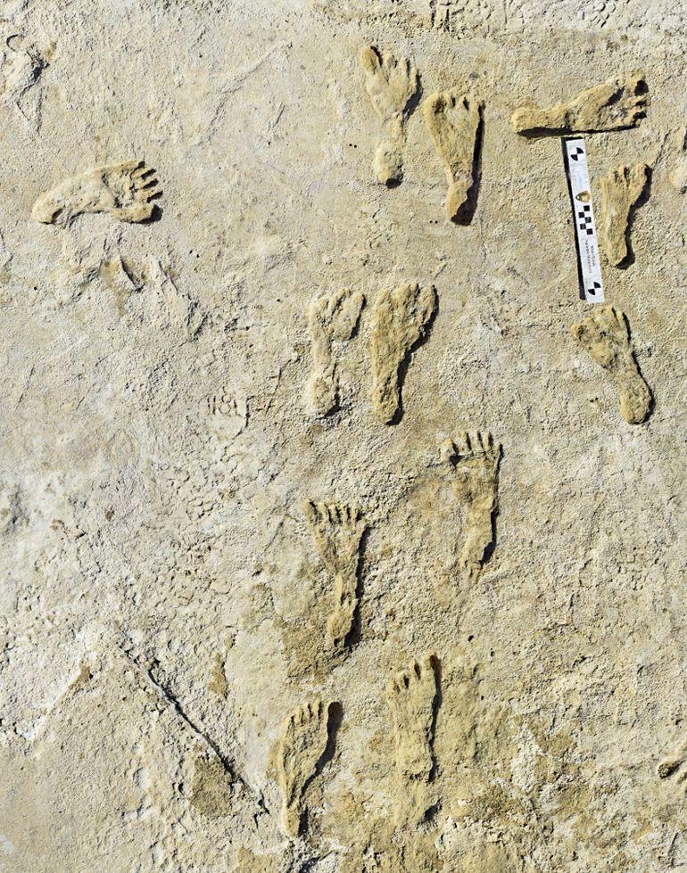 Hallan huellas humanas de hace 23.000 años en Nuevo México