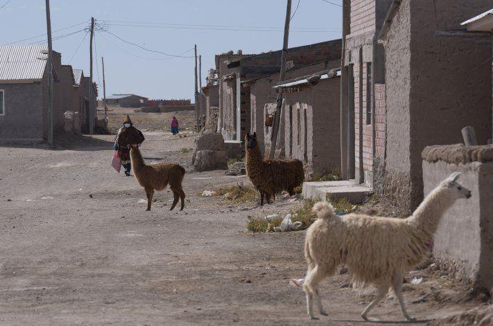 Vacuna contra COVID llega a remota etnia andina de Bolivia