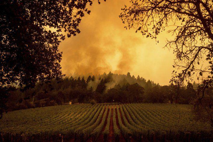 California: Ola de calor causa interrupción de electricidad