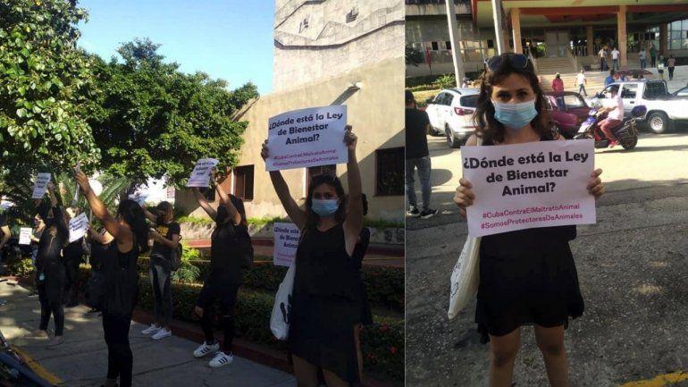 Protesta en el Ministerio de Agricultura de La Habana  reclama Ley de Protección animal